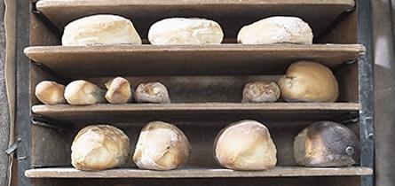 boulanger hirondelle